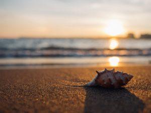 piaszczysta plaża